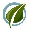 Экологическое образование Кузбасса в лицах